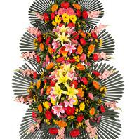 축하화환 3단(특)